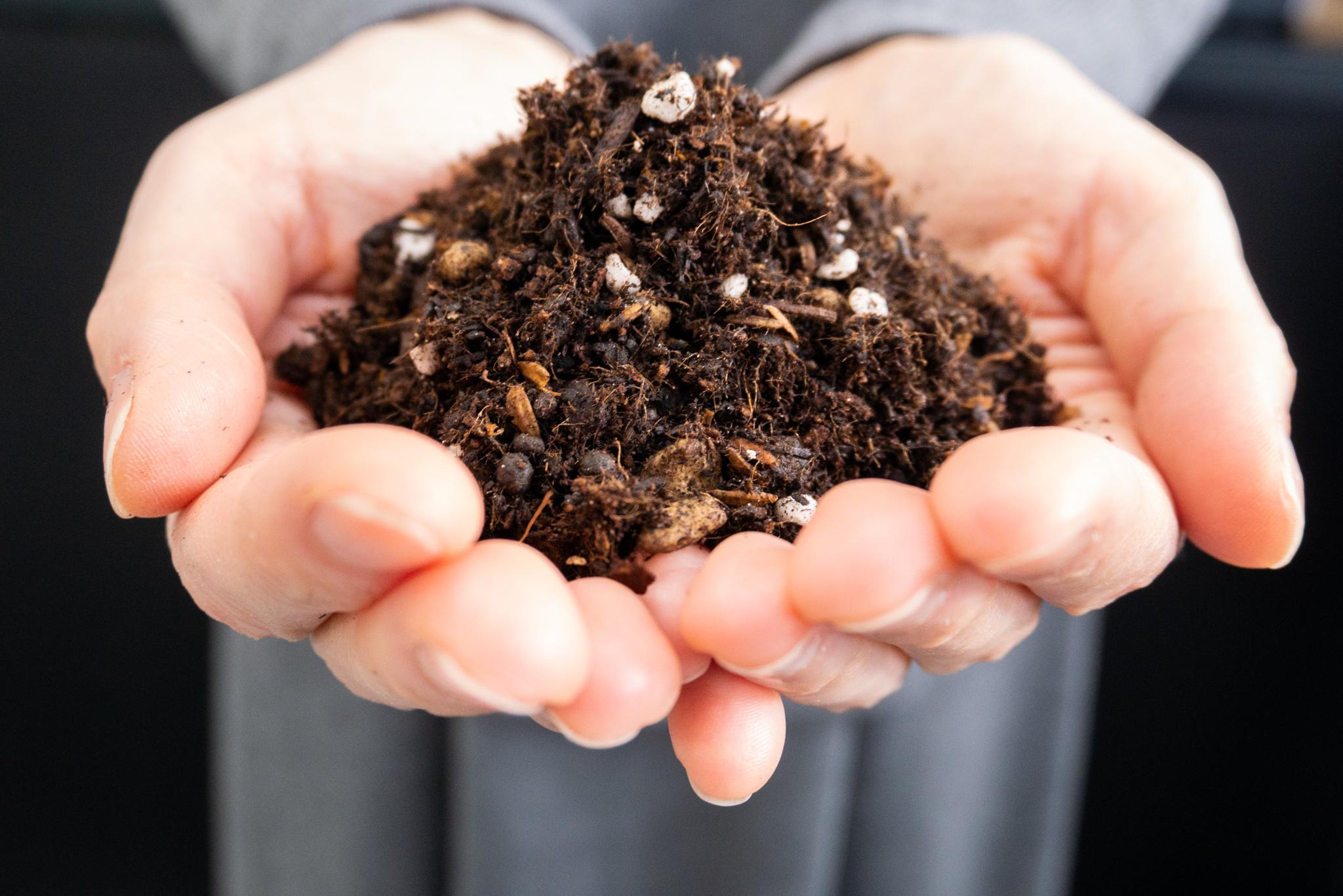 ユーグレナ配合堆肥・培養土