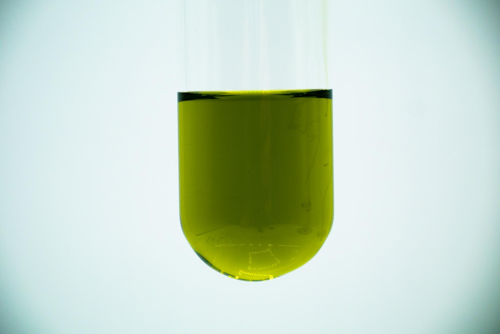ユーグレナ由来銅クロロフィル色素